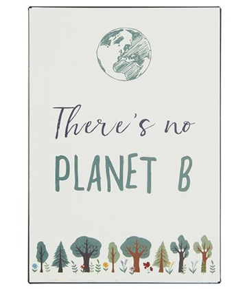 Ib Laursen Metalskilt - There is no PLANET B